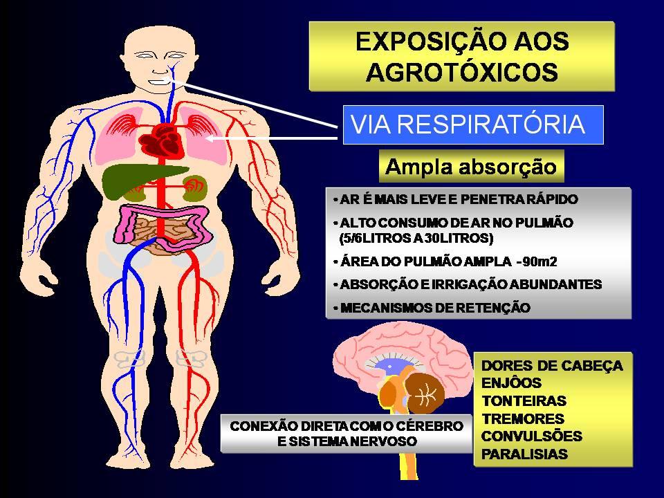 agrotoxicosnrfacil1