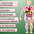 NRs 7 (PCMSO) e 15 (INSALUBRIDADE) APRESENTAÇÃO SOBRE TOXICOLOGIA OCUPACIONAL