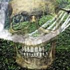 DIA DO MEIO AMBIENTE (5 JUNHO): O LIXO DOS AGROTÓXICOS NO TRABALHO